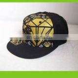 Baseball cap with 3D embroidery logo