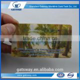 blank transparent business cards, blank plastic pvc card