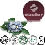 Natural Fruit flavor powder factory supply origin 1%-25% PAC Blueberry Fruit Extract powder