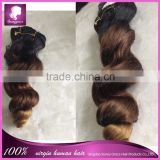 "6A grade three tone color loose wave 14"" Brazilian virgin human hair extension in stock"