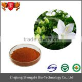 Campanula cochlearifolia Plant flower extract Balloon flower Extract