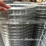 Long service life welded mesh price for cages, for poulty cages mesh, galvanized wire mesh (PA - 002)