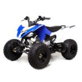 Raptor 125cc 8inch tire