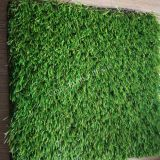 35mm Synthetic Landscape Turf with 5 Tone Color for Australia
