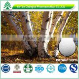 98% Birch Bark Extract Betulin Powder By HPLC