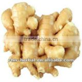 100% Natrual Dried Ginger Extract(Gingerols 5% HPLC) Negative Salmonella Zingiber officinale Powder