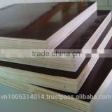 18m Brown Film Faced Boiling Waterproof Plywood