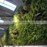wall decoration decoration synthetic cheap artificial vertical green grass wall E08 04R09