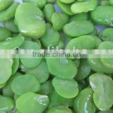 Frozen Broad Bean Kernels