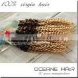 Ombre two zone color brazilian hair weave colours