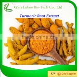Hot selling Turmeric Root Extract 95% Curcumin Powder in bulk
