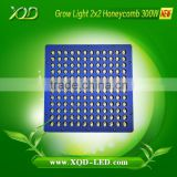 agriculture lighting grow microgreens use Intelligent Control System honeycomb size 300w led grow light with x lens