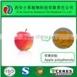 Apple pectin powder/ Citrus Pectin Powder