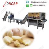 High Efficiency Garlic Peeling Production Line For Sale