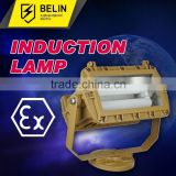 Well glass explosion proof light induction lamp SBD1109