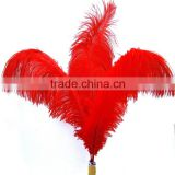 Hot sale artificial ostrich feathers for Carnivel Costumes,white ostrich plumes,red ostrich feather