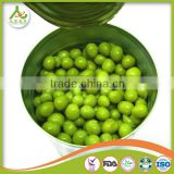 China iq green peas,Frozen green peas brands ,frozen pea, frozen green pea supplier China