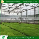 Factory price heating system polycarbonate sheet mini plastic greenhouse