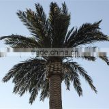 SJ07011102 Wholesale tree leave outdoor/High initation plam tree leave/decorative palm leaves
