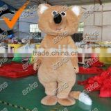 fur mascot costumes (bear,funny,advertising)
