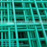 best price high quality PVC coated welded wire mesh/galvanized welded wire mesh---WMSL015