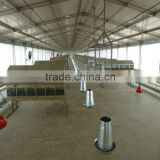 Light steel structure poultry farm shed chicken house with equipment/carport/car garage /steel structure building project