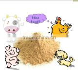 BEST QUALITY FEED GRADE LYSINE