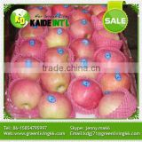 fresh red delicious apple from China
