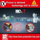 Advanced processing Chemical crosslinked pe foam sheet machine