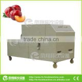 High Quality Green Plun/Apricot /Peach Pit Removing Machine with CE certificated