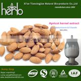 food supplement bitter apricot seed extract amygdalin