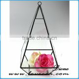 Transparent Glass Plant Terrarium Hanging Geometric Glass Terrarium, Glass Globe Hanging Terrarium
