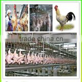 Automatic poultry slaughter processing line/ Chicken slaughtering houes/Chicken slaughter line