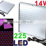 LED Grow Plant Light Square Panel 14W Environment-friendly Indoor 225pcs Blue Red Orange White Plant Grow Light