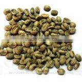 raw arabica and robusta coffee beans exporters india/robusta cherry,arabica plantation suppliers