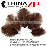 CHINAZP No.1 Supplier in China Factory Exporting Bulk Sale Colored Dark Brown from 15-20cm Ostrich Feathers