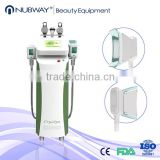 2016 cryolipolisis fat removal machine/ cryolipolisis antifreeze membrane on the sale