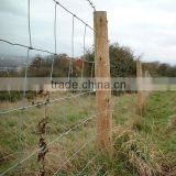 high quality low price galvanized cattle fence design(factory)