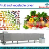 Fruit and vegetable dryer/electric fruit dryer/electric vegetable dryer/vacuum dryer for fruit and vegetable
