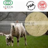 High Quality GMP Certified Sheep Placenta Extract Powder, Sheep Placenta to improve the human skin, beauty, whitening skin