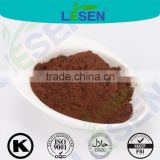 Superfoods Organic Enhance Immunity Chaga Mushroom Extract Inonotus Obliquus Extract Powder Betulin