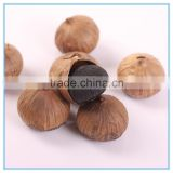 Japanese Black Garlic Pearl Wholesale