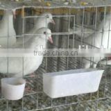 best selling products pigeon breeding cage/ chicken poultry cage