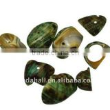 Sea Shell Beads, Dyed, LimeGreen, about 12~22x10~22x2~4mm, hole: 2mm, about 920pcs/500g(BSHE-S002-8)
