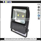 100w 150w 200w anti sea water proof floodlight RGB pir photo cell ce 0-10V dali 100lm 30d 120d DC12V DC24V 100V-240V