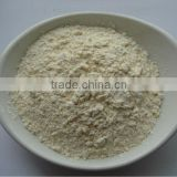 Standard quality white garlic powder