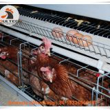 Libya Poultry Farming A Type Battery Layer Cage & Chicken Coop & Hot Galvanized Cage & Hen Cage with 120 birds in Shed