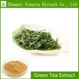Factory Supply Natural GreenTea Extract 98% L Theanine l-theanine