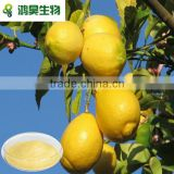 No essence no pigment instant lemon tea powder new product