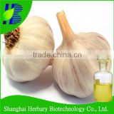 ISO factory supply garlic oil bulk